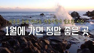 1월에가면좋은겨울여행지/베스트겨울여행추천/사진강의/국내…