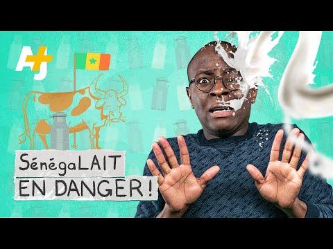 """COMMENT L'EUROPE VEND UN """"FAUX LAIT"""" EN AFRIQUE"""