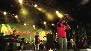 Barrington Levy - Live@Reggaejam 2013 - too experienced -