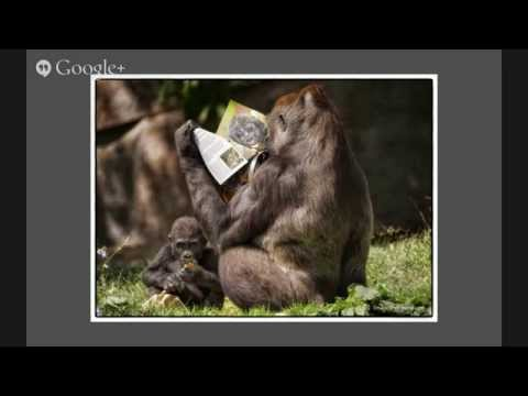 VW5 – Photographing Wildlife with Laurie Rubin