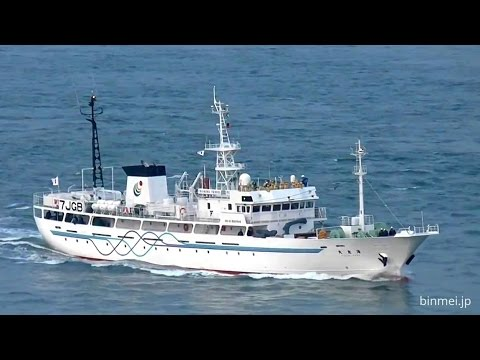 漁業練習船海友丸 / KAIYUMARU - fisheries training ship