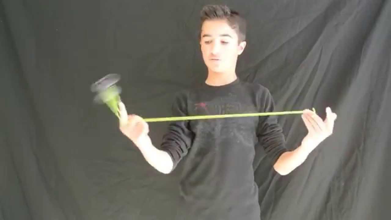 how to train gerbils to do tricks