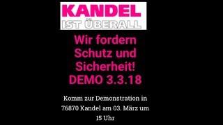 MdBs rufen zur Demo am 03.03. in Kandel auf: