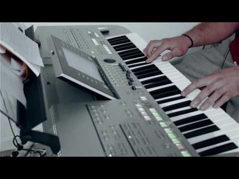 Smiley - In statie la Lizeanu (Domnisoara, domnisoara) instrumental cover