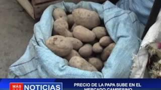 PRECIO DE PAPA SUBE EN EL MERCADO CAMPESINO