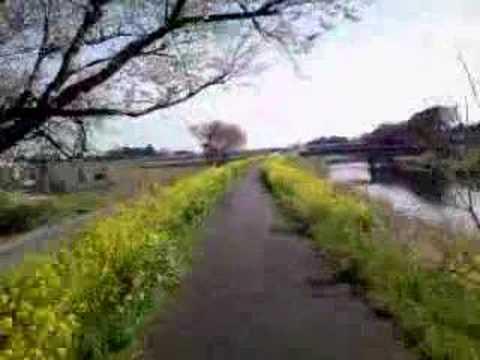 筑西自転車道 - YouTube