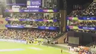 dwayne bravo celebration