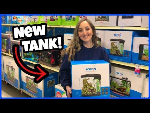 Buying My GIRLFRIEND A New BETTA FISH TANK!