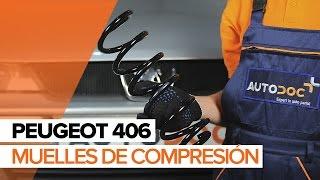 Reparación PEUGEOT 406 de bricolaje - vídeo guía para coche