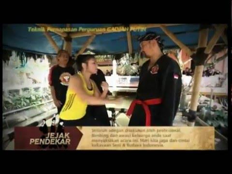 Deden Effendi - Silat Warrior ( Jejak Pendekar on National TV Station )