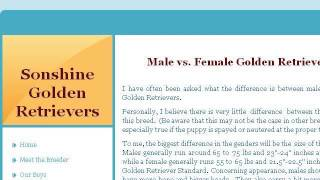 Differences Between Male And Female Golden Retrievers