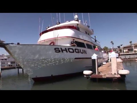 App Report   Shogun Boat Operation