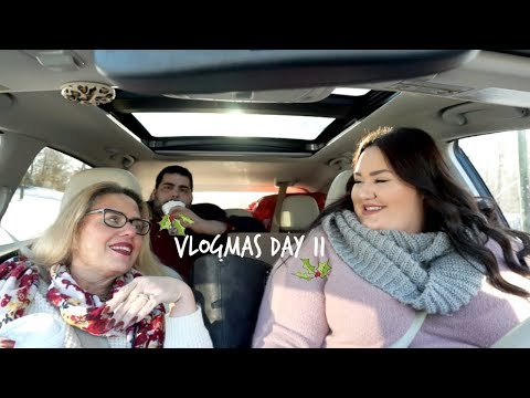 Vlogmas Day 11⎪We Finally Got Our Fix 🎄