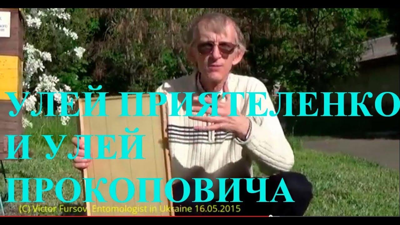 Украинский лежак на 24 рамки с перегородкой. - YouTube
