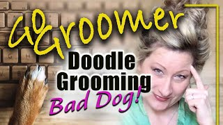 How to groom a difficult dog successfully!