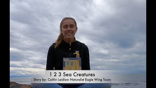World Oceans Week Story reading: 1 2 3 Sea Creatures with Eagle Wing Tours, Victoria, BC