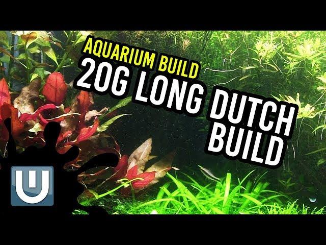 20g Dutch Style | Aquarium Build