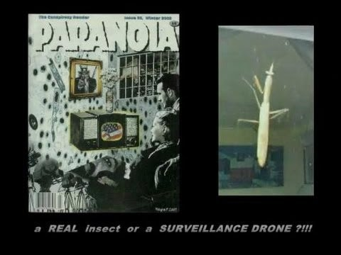 PARANOIA - a REAL insect or a SURVEILLANCE DRONE ???!!!