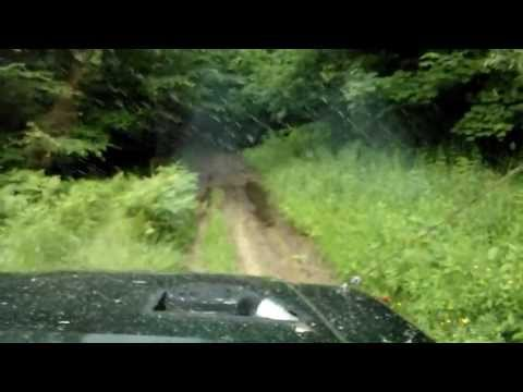 3 Guys Getting Lucky In Forest With A Old Dirty Women