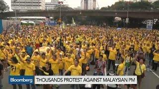 Call for Change: Protesters Demand Malaysia's Najib Resign