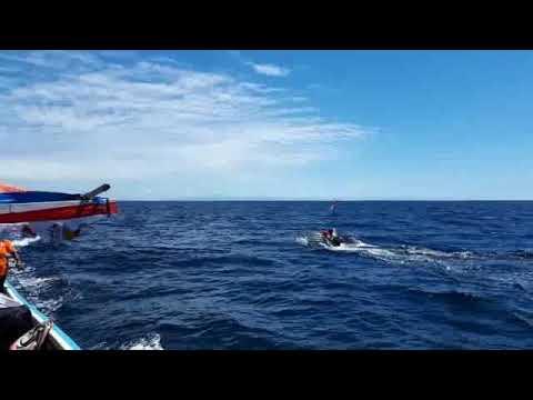 HISTERIS.... Detik-detik KMP Gunung Dempo lewati perahu nelayan Kampung Arui Nabire Papua Mp3