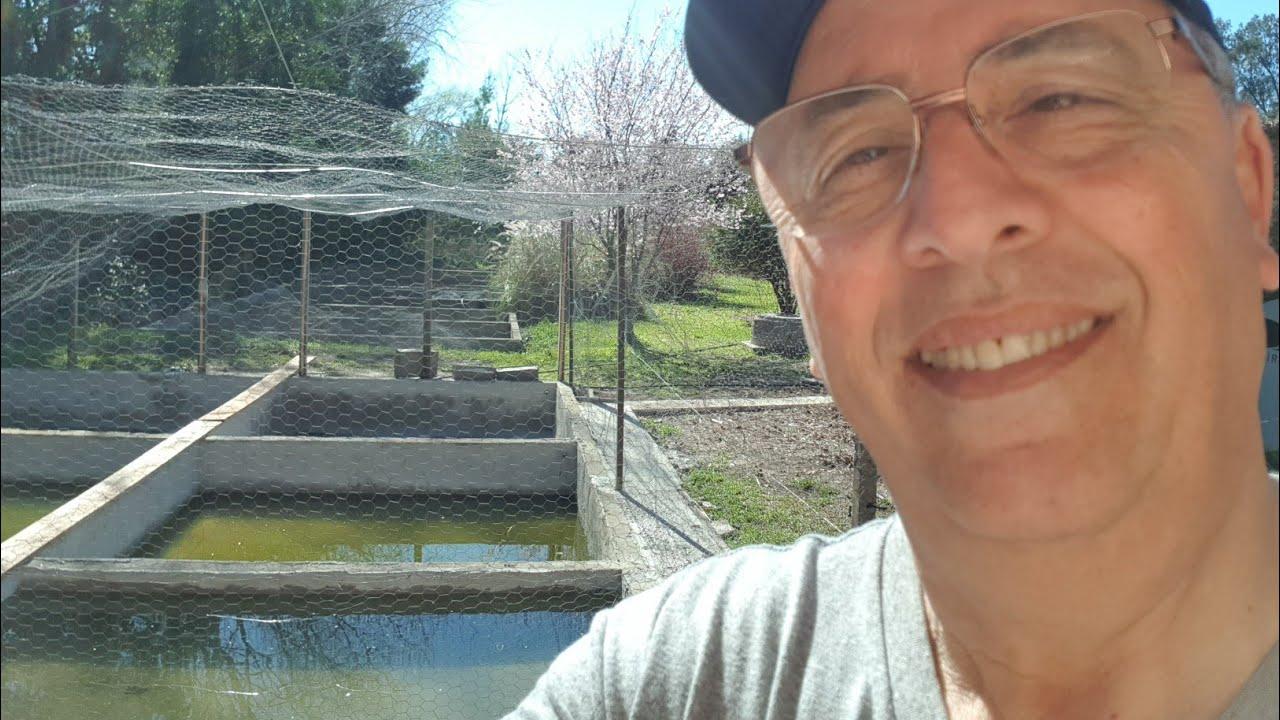 C mo hacer un estanque economico para peces y plantas for Para desarrollar un parque ajardinado
