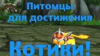 """Питомцы для достижения """"Котики!"""" - часть 1"""