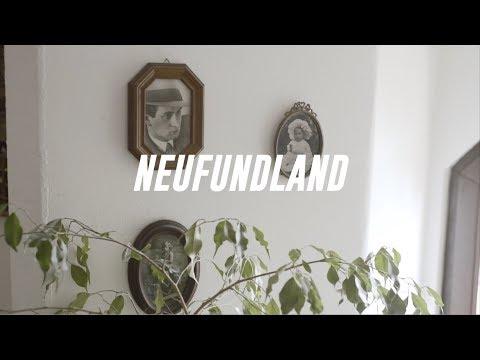 NEUFUNDLAND - KOPF IN DEN WOLKEN