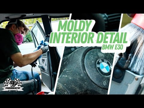 Cleaning The Moldiest Car Interior Ever! BMW E30 Interior Detailing Restoration