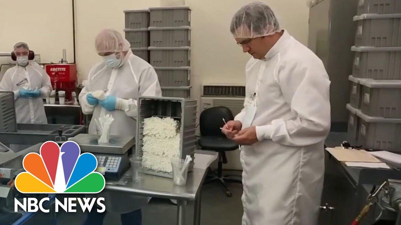 Swab Manufacturers Struggle To Keep Up With Coronavirus Test Kit Demands | NBC News NOW