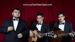 Los Tres Tristes Tigres - Como no voy a quererla (Las Suegras)