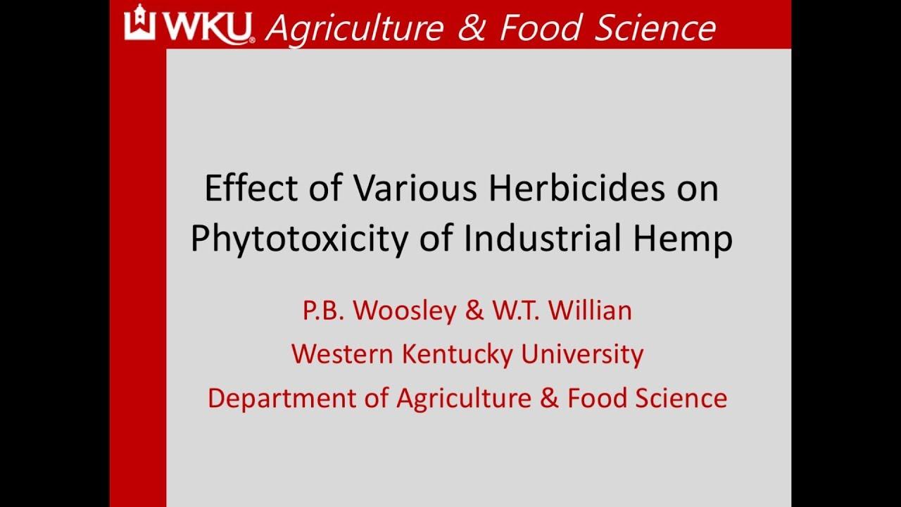 Effect of Herbicides on Hemp Production - WKU Study- KYHIA ...