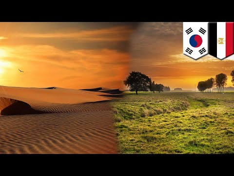 Turning the desert green: South Korea, Egypt turn Qattara Depression into farm - TomoNews