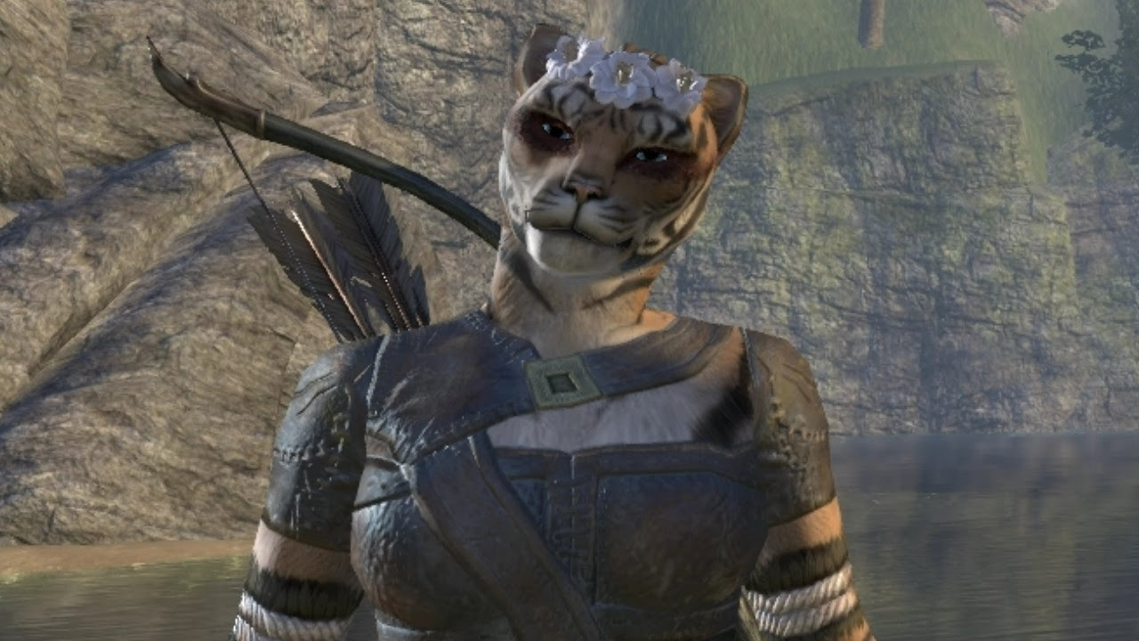 Cutest Emotes Ever from Elder Scrolls Online