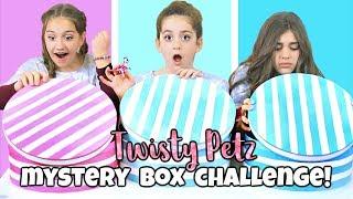 Mystery Box Challenge with New Series 2 Twisty Petz!