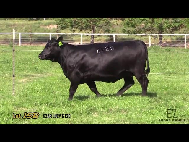 EZ Angus Ranch Lot 15B