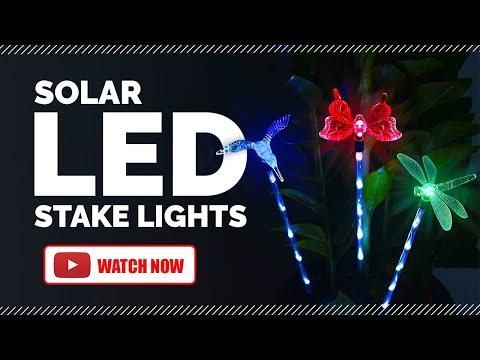 Hardoll Solar LED Light Garden Stake   Hummingbird Butterfly Dragonfly   Outdoor Home Decoration