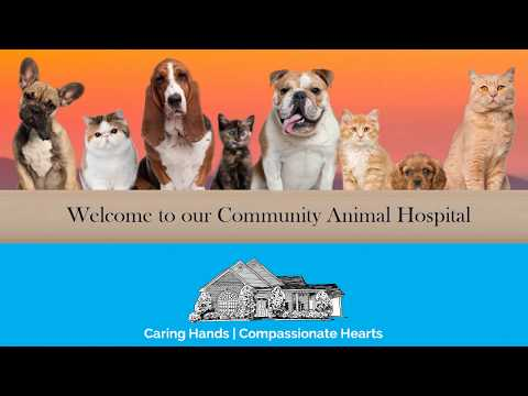 WELCOME TO COMMUNITY ANIMAL HOSPITAL - CLEVELAND, TN