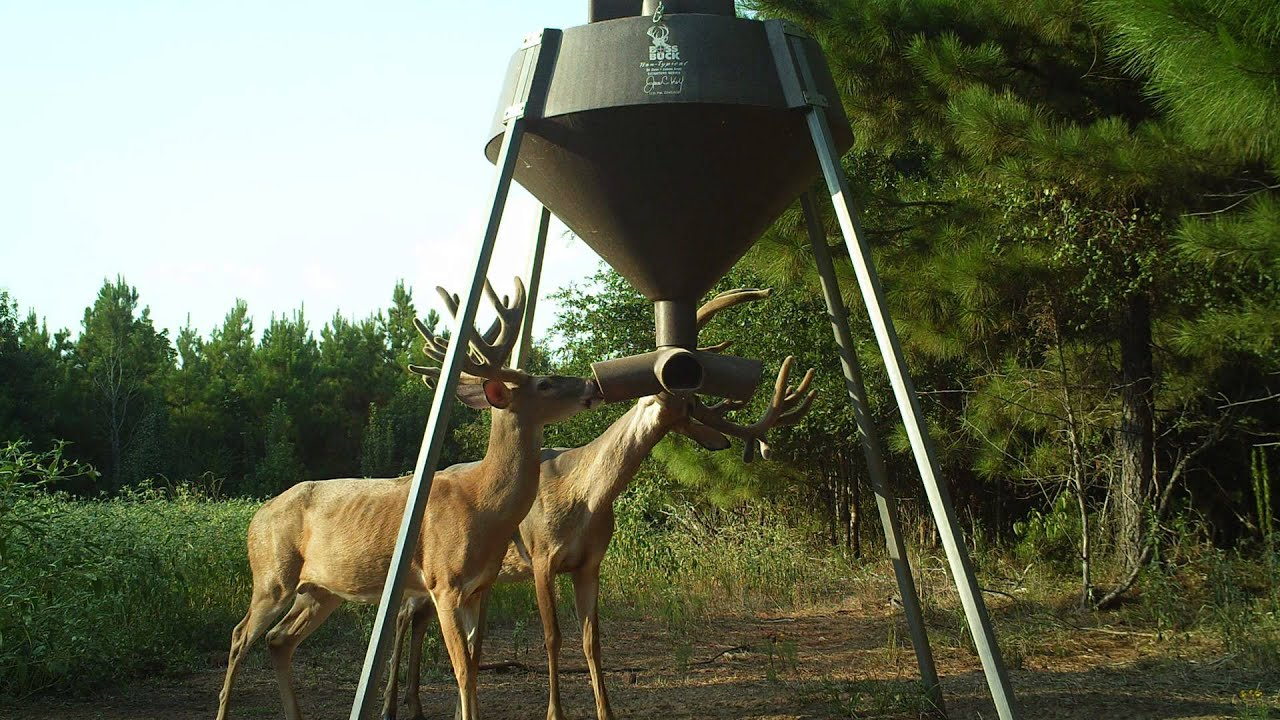 wildlife deer profile feeder fdr tm outback feeders protein