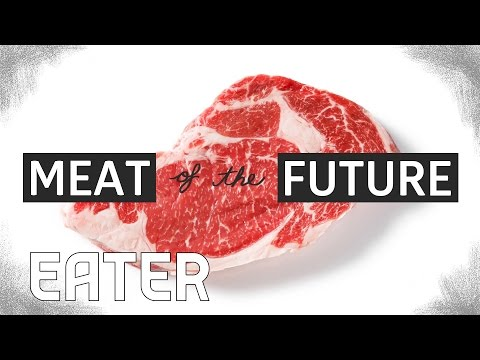 The Meat of the Future: How Lab-Grown Meat Is Made