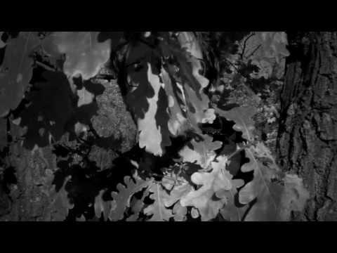 Saarpreme (Manuskript&Trip) - Hahugahagahua (Sinok-Remix)