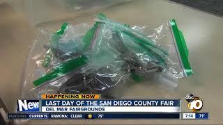 Odd items found at the fair