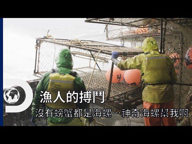 螃蟹0隻,籠子裡面全是海螺......怎麼會這樣?《漁人的搏鬥第17季》Deadliest Catch S17