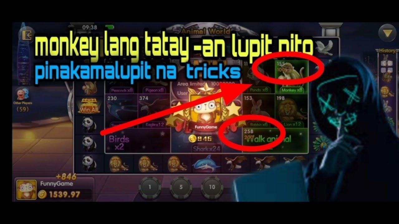 Funny Game || Monkey Lang Tatay-an Pinakamalupit na Tricks Animal World.