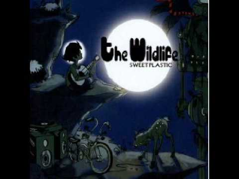The Wildlife- Electric Slide (music only)