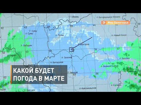 Какой будет погода в марте-2020 в Белгороде
