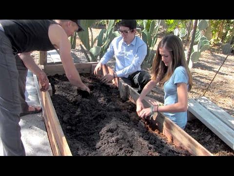 THE BEST SOIL for A VEGETABLE GARDEN at Home Maces Mix YouTube