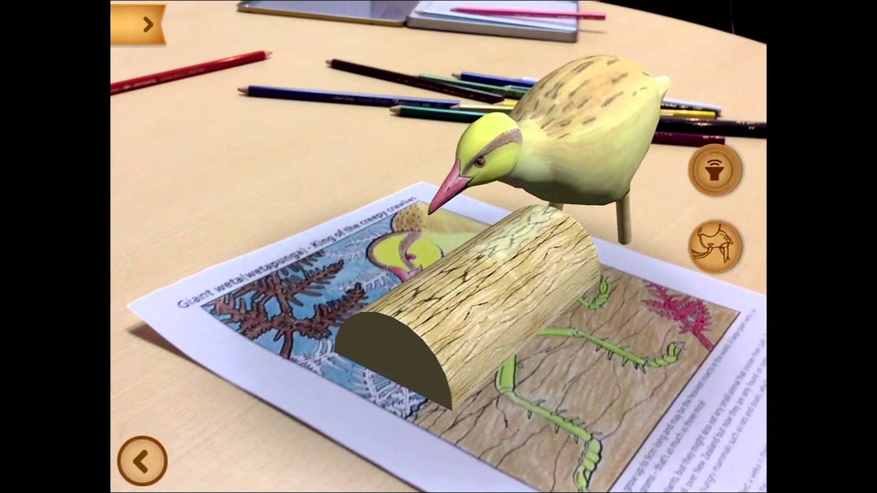 Quiver free coloring pages - Quiver Content Preview Weta Page Amazing Animals Of New Zealand Pack Youtube