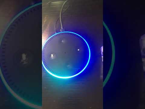 "Alexa can't play the ""hipster song with whistling"""