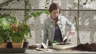Elho - green basics grow your own(, 2014-04-16T06:23:48.000Z)